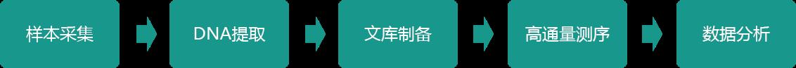 上海宏序生物科技有限公司